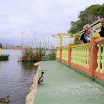 Cullera, un lugar para ver las aves