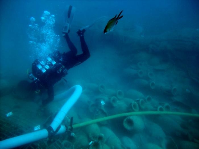 yacimiento subacuático